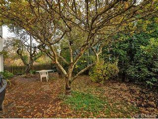 Photo 15: B 1601 Haultain St in VICTORIA: Vi Oaklands Half Duplex for sale (Victoria)  : MLS®# 690016
