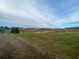 Photo 8: 49101 Range Road 233: Rural Leduc County Rural Land/Vacant Lot for sale : MLS®# E4219459