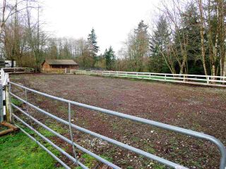 Photo 18: 20475 1ST AVENUE in Langley: Campbell Valley House for sale : MLS®# R2036160