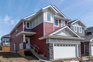 Photo 37: 180 Edgemont Road in Edmonton: Zone 57 House for sale : MLS®# E4261347