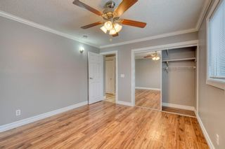 Photo 34: 355 Whitman Place NE in Calgary: Whitehorn Detached for sale : MLS®# A1046651