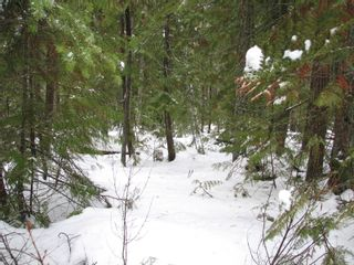 Photo 12: Lot 1 Trans Can Hwy: Blind Bay Land Only for sale (Shuswap)  : MLS®# 10148323