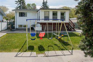 Photo 18: 42 Deloraine Drive in Winnipeg: Crestview Residential for sale (5H)  : MLS®# 1915398