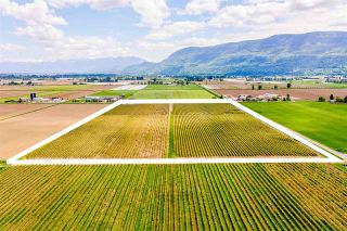 Photo 6: 4081 DIXON Road: Agri-Business for sale in Abbotsford: MLS®# C8038207
