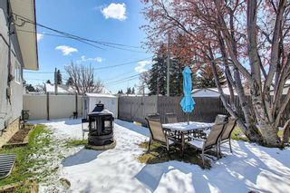 Photo 39: 1027 Penrith Crescent SE in Calgary: Penbrooke Meadows Detached for sale : MLS®# A1104837