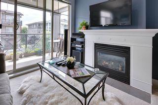 Photo 7: 304 2330 WILSON AVENUE in Port Coquitlam: Central Pt Coquitlam Condo for sale : MLS®# R2083027
