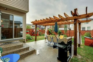 Photo 26: 161 CHAPALINA Heights SE in Calgary: Chaparral Detached for sale : MLS®# C4275162