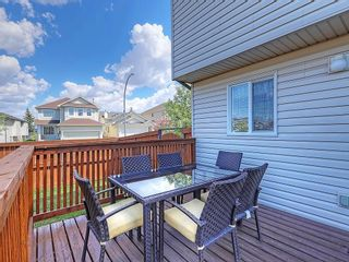 Photo 37: 134 TARALEA Manor NE in Calgary: Taradale House for sale : MLS®# C4186744