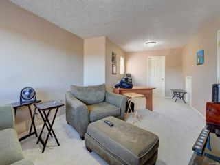 Photo 21: 6668 Rey Rd in Central Saanich: CS Tanner House for sale : MLS®# 886103