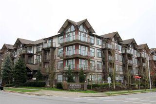 """Photo 16: 115 15322 101 Avenue in Surrey: Guildford Condo for sale in """"Ascada"""" (North Surrey)  : MLS®# R2135574"""