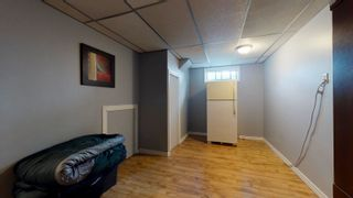 Photo 25: 17283 104 Street in Edmonton: Zone 27 House for sale : MLS®# E4253302