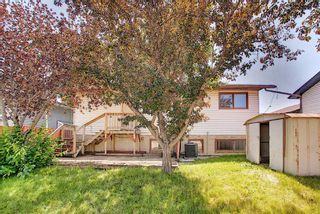 Photo 25: 212 Rundlefield Road NE in Calgary: Rundle Detached for sale : MLS®# A1129296