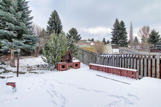Photo 42: 5916 Dalcastle Drive NW in Calgary: Dalhousie Detached for sale : MLS®# A1085841