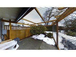 Photo 16: 4641 Lochside Dr in VICTORIA: SE Broadmead Half Duplex for sale (Saanich East)  : MLS®# 750389