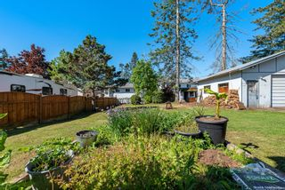 Photo 37: 4639 Macintyre Ave in : CV Courtenay East House for sale (Comox Valley)  : MLS®# 876078