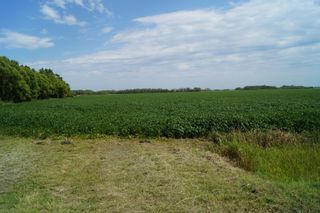 Photo 4: 0 Poplar Road in RM Springfield: Vacant Land for sale : MLS®# 1523484