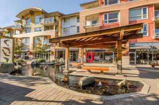 "Photo 20: 302 1315 56 Street in Tsawwassen: Cliff Drive Condo for sale in ""OLIVA"" : MLS®# R2279373"