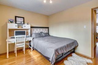 Photo 28: 31 Mapleglade Close SE in Calgary: Maple Ridge Detached for sale : MLS®# C4306139