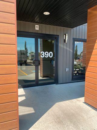Photo 1: 336 390 Windermere Road in Edmonton: Zone 56 Condo for sale : MLS®# E4253552
