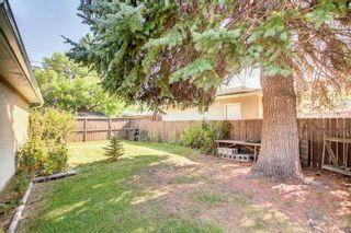Photo 34: 2618 46 Street SE in Calgary: Forest Lawn Detached for sale : MLS®# A1146875
