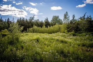 Photo 1: Lot A6 Aylesford Road in Lake Paul: 404-Kings County Vacant Land for sale (Annapolis Valley)  : MLS®# 202115394