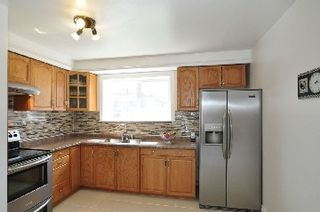 Photo 7: 7132 Honeysuckle Avenue in Mississauga: Malton House (Bungalow) for sale : MLS®# W2769466