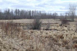 Photo 15: Twp 510 RR 33: Rural Leduc County Rural Land/Vacant Lot for sale : MLS®# E4239253