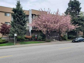 """Photo 1: 202 2245 WILSON Avenue in Port Coquitlam: Central Pt Coquitlam Condo for sale in """"Mary Hill Place"""" : MLS®# R2570970"""