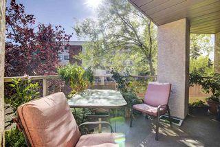 Photo 38: 103 6623 172 Street in Edmonton: Zone 20 Condo for sale : MLS®# E4224265