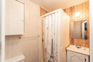 Photo 24: 3726 58 Avenue: Red Deer Detached for sale : MLS®# A1136185