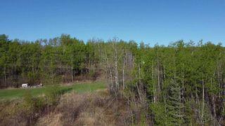 Photo 3: 13359 HIGHLEVEL Crescent: Charlie Lake Land for sale (Fort St. John (Zone 60))  : MLS®# R2519434