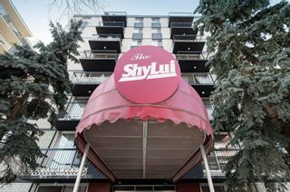 Photo 1: 201 1111 15 Avenue SW in Calgary: Beltline Apartment for sale : MLS®# A1074011