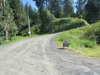 Photo 17: 6650 HINKLEY Road in Chilliwack: Eastern Hillsides House for sale : MLS®# R2180877