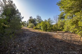 Photo 3: SANTEE Property for sale: 8540 S Slope Dr