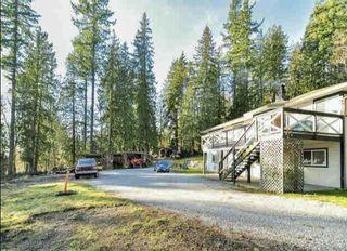 Photo 5: 26950 100 Avenue in Maple Ridge: Thornhill MR House for sale : MLS®# R2526301