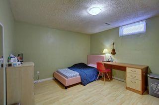 Photo 29: 235 PENBROOKE Close SE in Calgary: Penbrooke Meadows Detached for sale : MLS®# A1029576