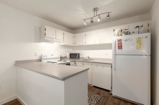 """Photo 8: 101 2920 ASH Street in Vancouver: Fairview VW Condo for sale in """"Ash Court"""" (Vancouver West)  : MLS®# R2615641"""