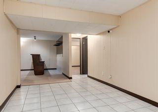 Photo 30: 11039 166 Avenue: Edmonton Detached for sale : MLS®# A1083224