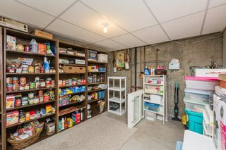 Photo 38: 1731 54 Street in Edmonton: Zone 29 House for sale : MLS®# E4253795