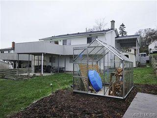 Photo 13: 1261 Vista Hts in VICTORIA: Vi Hillside House for sale (Victoria)  : MLS®# 628171