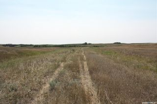 Photo 7: Lot 43 Clinton Street in Dundurn: Lot/Land for sale (Dundurn Rm No. 314)  : MLS®# SK865296
