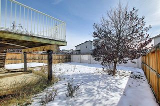 Photo 44: 23 Evanscove Heights NW in Calgary: Evanston Detached for sale : MLS®# A1063734