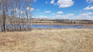 Photo 10: Range Road 55 in Rural Rocky View County: Rural Rocky View MD Land for sale : MLS®# C4295902