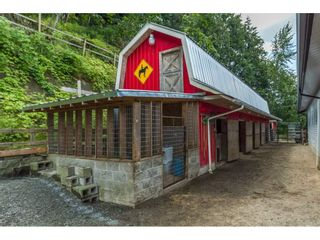 """Photo 19: 39170 OLD YALE Road in Abbotsford: Sumas Prairie House for sale in """"ARNOLD"""" : MLS®# R2197988"""
