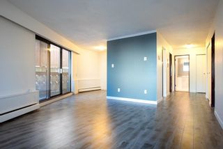 """Photo 7: 1441 W 70TH Avenue in Vancouver: Marpole Multi-Family Commercial for sale in """"Broadview Court"""" (Vancouver West)  : MLS®# C8038842"""