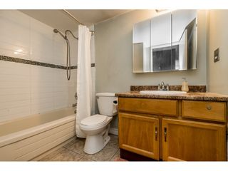 """Photo 16: 213 9952 149 Street in Surrey: Guildford Condo for sale in """"Tall Timbers"""" (North Surrey)  : MLS®# R2366920"""