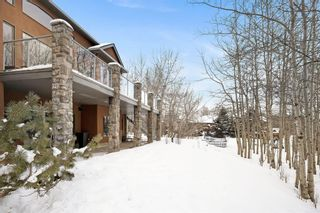 Photo 44: 59 CHEYANNE MEADOWS Way in Rural Rocky View County: Rural Rocky View MD Detached for sale : MLS®# A1070946