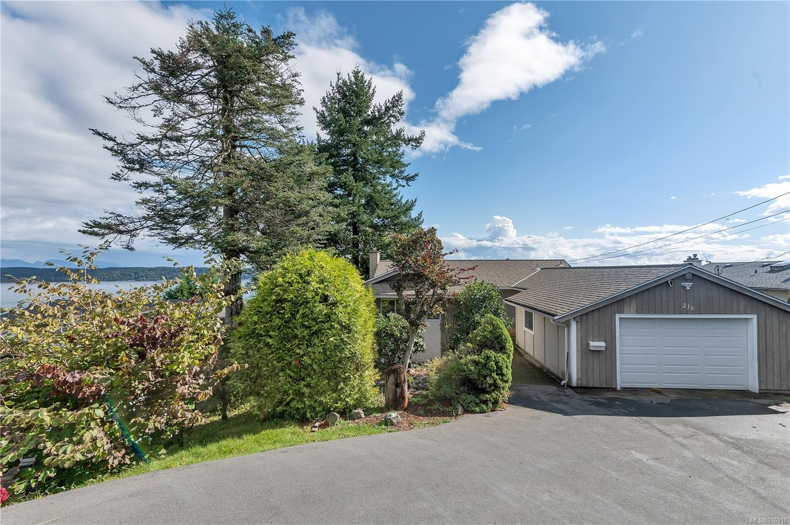 Photo 1: Photos: 215 S Alder St in : CR Campbell River Central House for sale (Campbell River)  : MLS®# 856910