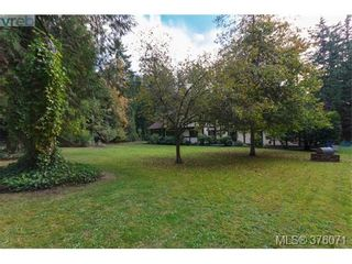 Photo 18: 686 Cromarty Ave in NORTH SAANICH: NS Ardmore House for sale (North Saanich)  : MLS®# 754969