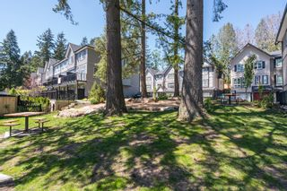 """Photo 27: 100 14555 68 Avenue in Surrey: East Newton Townhouse for sale in """"SYNC"""" : MLS®# R2169561"""